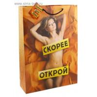 """Пакет ламинированный """"Скорее открой"""" 643087"""