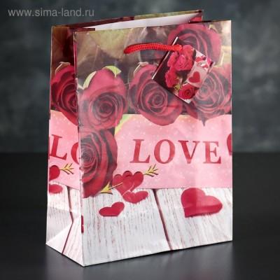 """Пакет ламинированный """"Любовь""""3821352"""